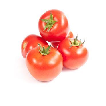 תמונה עבור הקטגוריה עגבניות